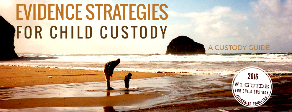 Evidence-Strategies-Child-Custody-banner-1